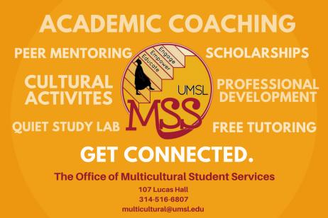 MSS Poster